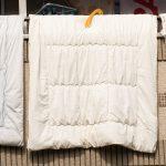ベッドと布団、どちらがいいですか?賃貸物件のタイプ別睡眠アドバイス