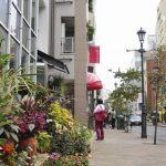 広尾駅は住みやすいですか?特徴・治安・家賃相場・評判などを教えて!