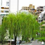高井戸駅は住みやすいですか?特徴・治安・家賃相場・評判などを教えて!