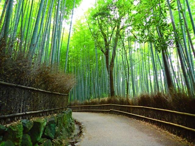 京都の住みやすい街①.桂駅