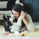 一人暮らしでも犬は飼えますか?住まいの対策や心構えを教えて!