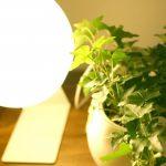 リビングや寝室をオシャレにする間接照明のおすすめテクニック