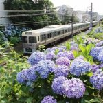 座って通勤したい!京王線の始発駅まとめ!家賃相場・住みやすさも合わせて紹介!