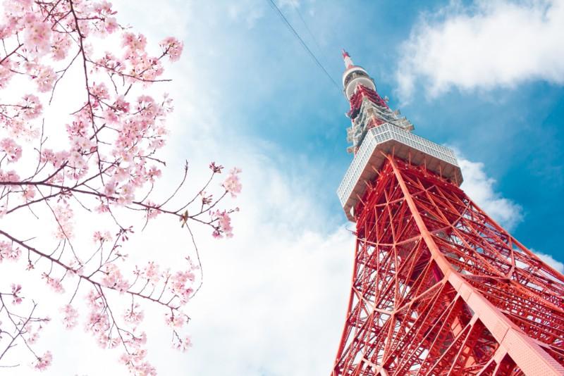 846 賃貸 東京