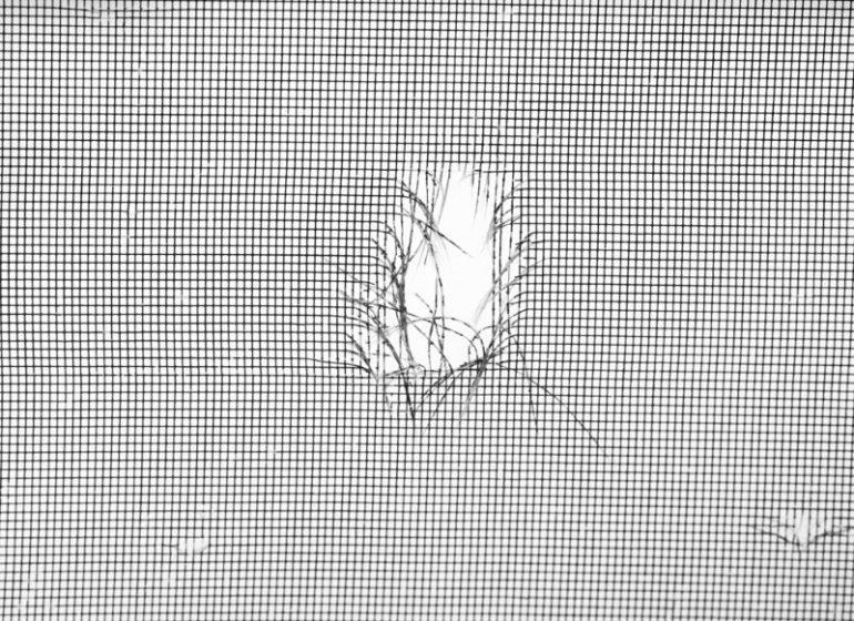 網戸に穴が空いているイメージ