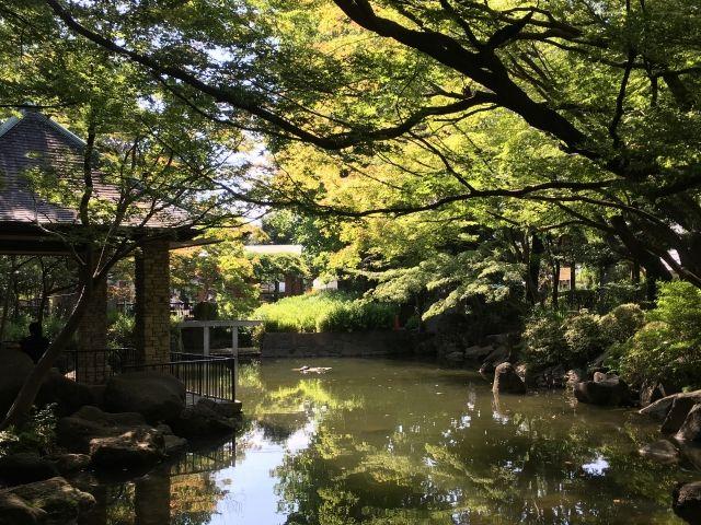 高円寺北のイメージ(馬橋公園)