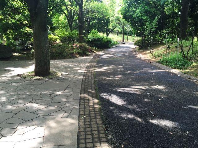 エリア4新井_平和の森公園の画像